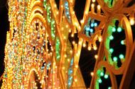 Luminarie 2007.jpg