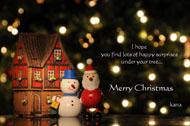 christmas card 2007.jpg