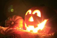 pumpkin beam.jpg
